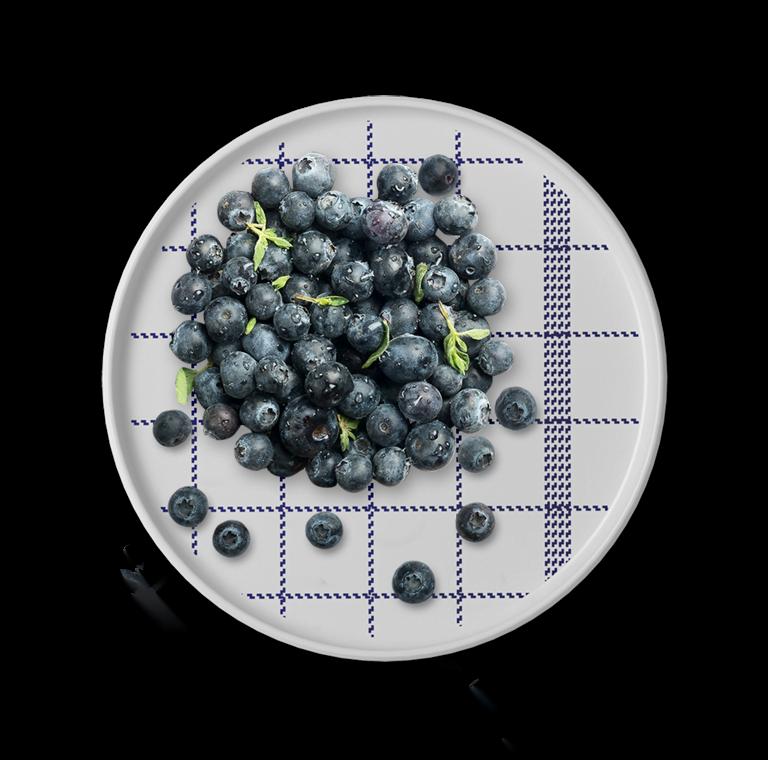 Taiga Blueberry
