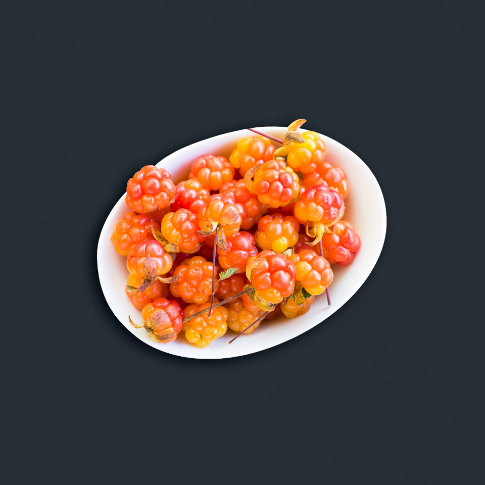 Sarek Cloudberry